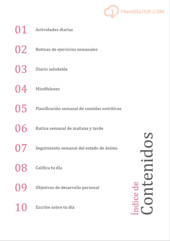 indice de contenidos bullet journal salud