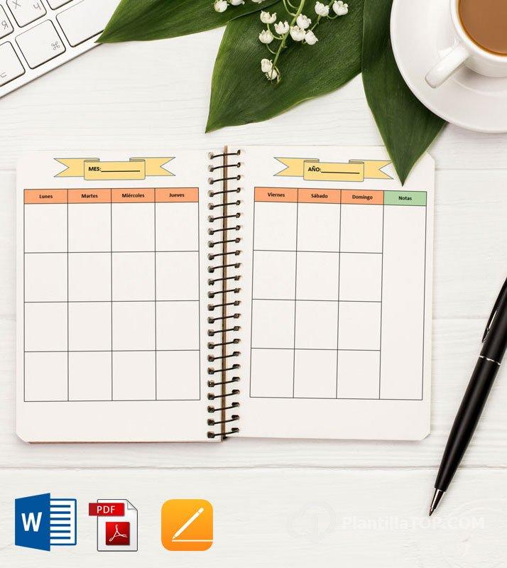 agenda anual visto