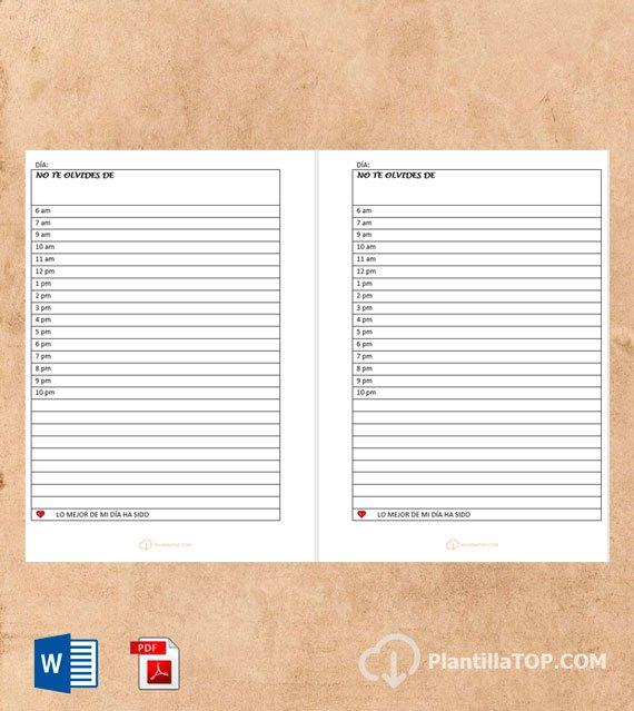 plantilla diaria pdf