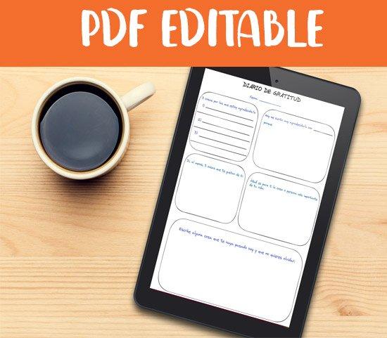 bullet editable pdf