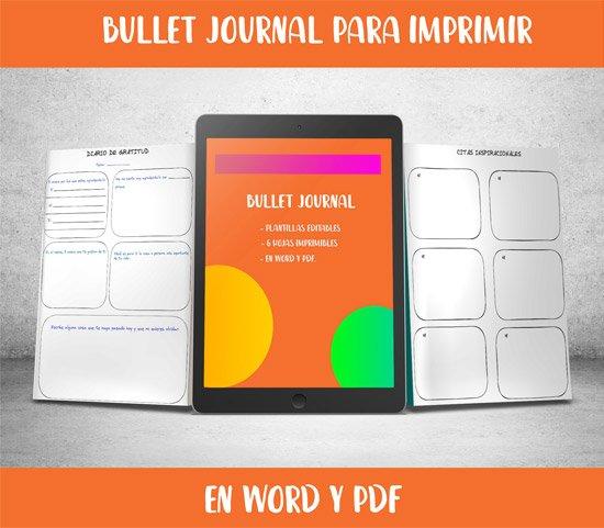 bullet journal manuscrito